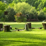 Ognisko w Agroturystyka Lema pod lasem
