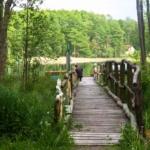 Wypoczynek nad jeziorem Wielkopolska